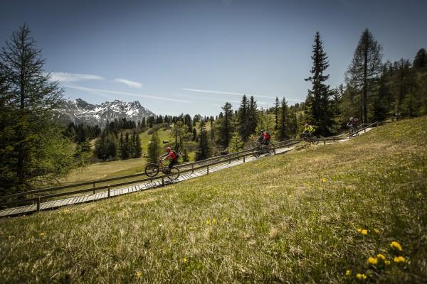 Alutech Trail Force